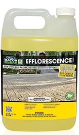 Gator Efflorescence Cleaner 1 Gallon